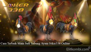 Cara Terbaik Main Judi Sabung Ayam Joker338 Online